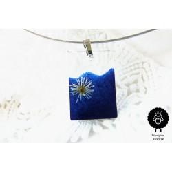Sedmikráskový s modrou. | TOP