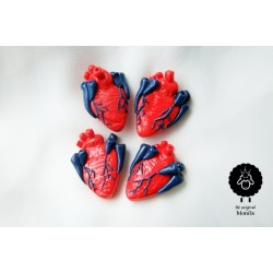 Srdce na dlani - brož