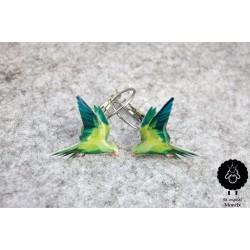 Papoušek – visací