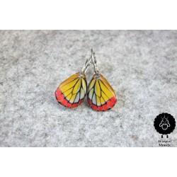 Motýlí křídlo – žluté